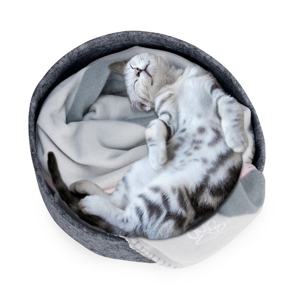 Grey kitten sleeping in felt round cat bed