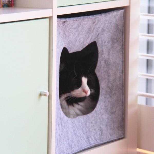 Cat sleeping in square felt cat cave