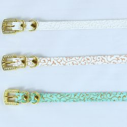 Horizontal row of three cat collars
