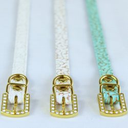 Row of three cat collars with gold buckles