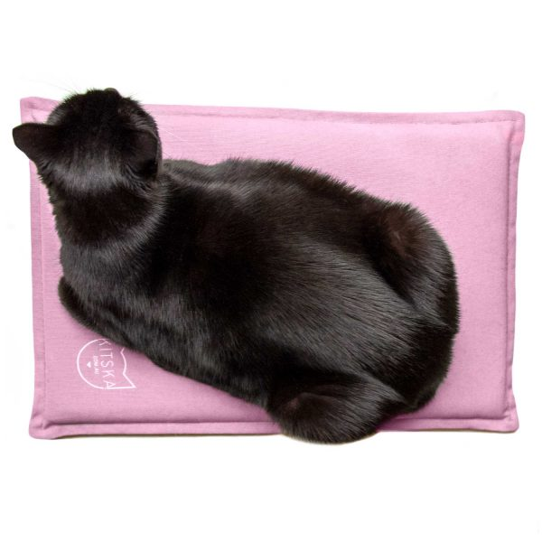 Black cat on pink bed
