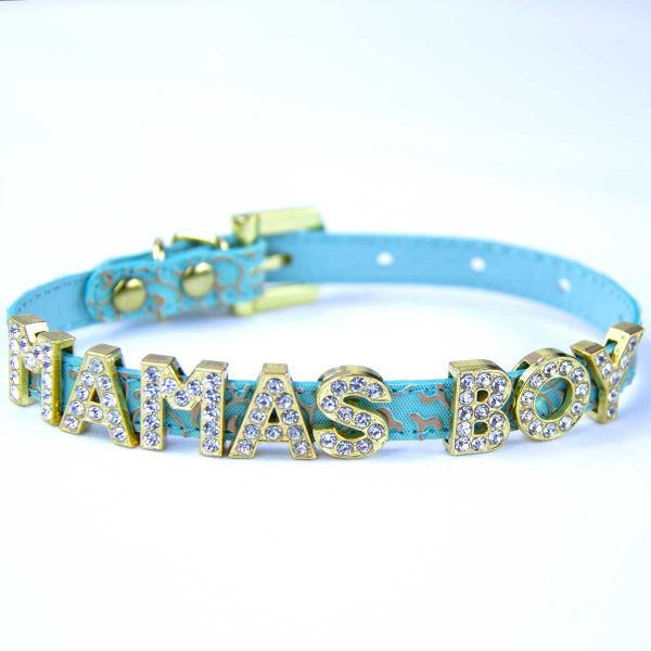 Green collar with words mama's boy
