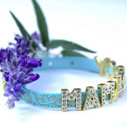 Mama's Boy green collar and flower
