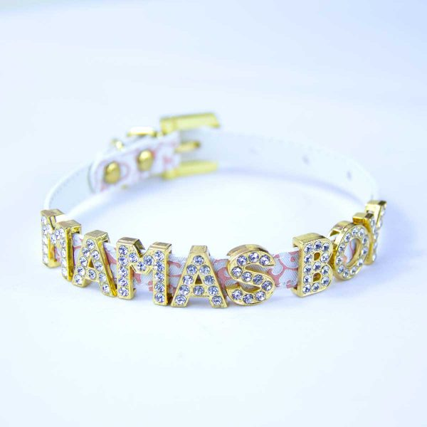 Cat collar with words Mamas Boy