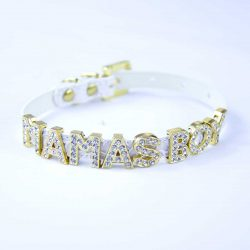 White cat collar with letters MAMAS BOY